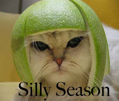 silly-season